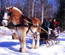 sleigh rides in the Poconos